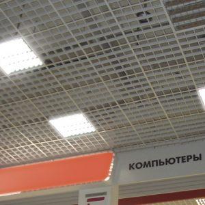 fotonl10big1